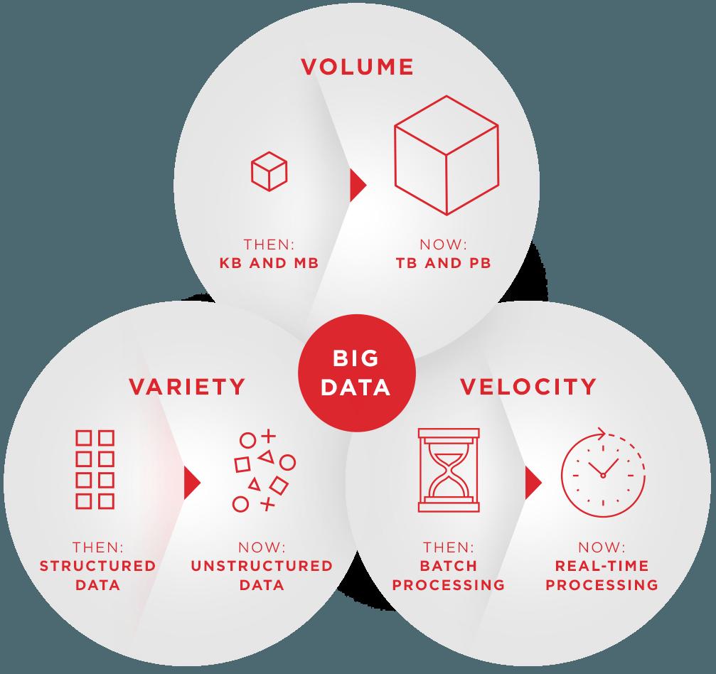 Bridgera's Big Data Services Info Graphic