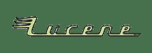Enterprise Solution - Lucene