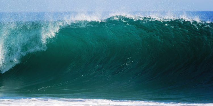 The IoT Tsunami: Will You Catch the Data Wave?